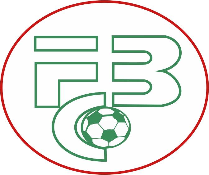 logo-fc-bergen